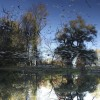 UPSIDE DOWN REFLECTION #2